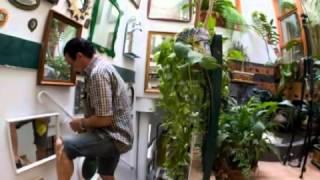 Casa Ecológica de Sevilla, una visión general